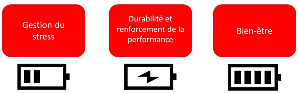 schéma centre de performance